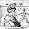 Cornelius Agrippa – The Witch's Advocate and Historical Faust