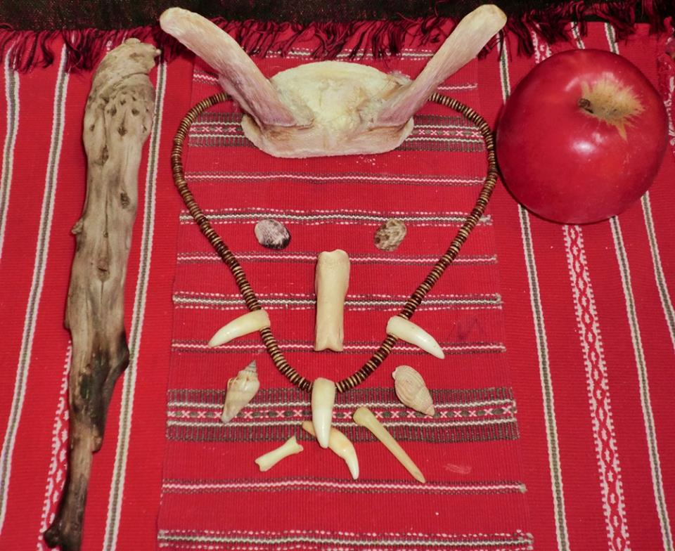 Arrangement of animal bones, horns and apple for witchcraft purposes.