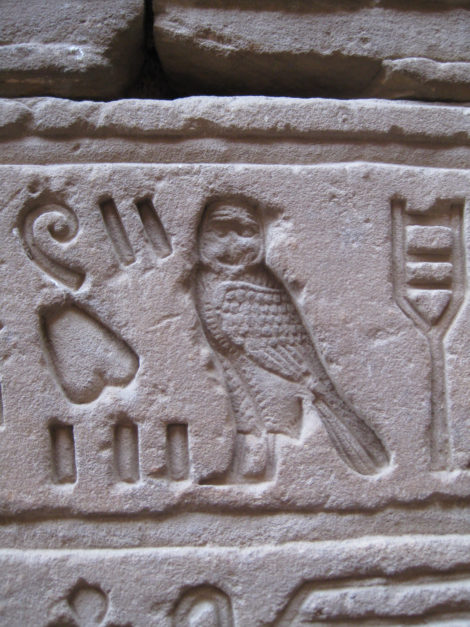 Owl hieroglyph at the Temple of Edfu in Egypt. Stone.