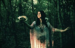 Totems, Familiars, Power Animals and Where to Find Them – Animal Magick and Witchcraft