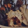 Animal skull on witches altar or shrine. Flowers. Still life.