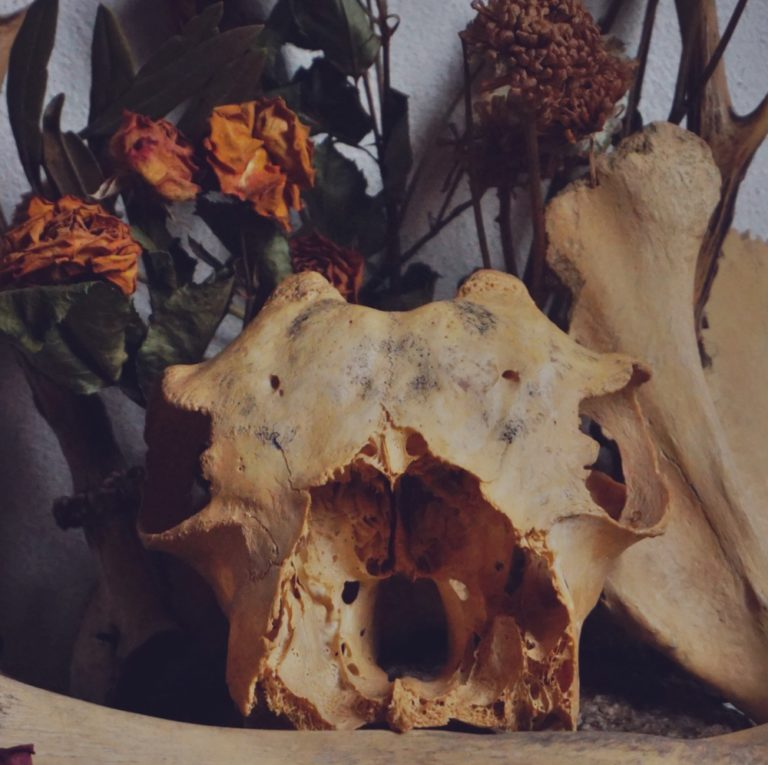 Ancestral Magick and Communion with the Cult of the Ancestors